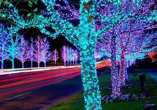 Led đúc 7 màu trang trí cây ven đường