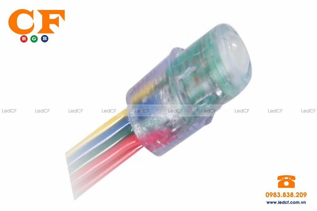Led full color không cần mạch điều khiển