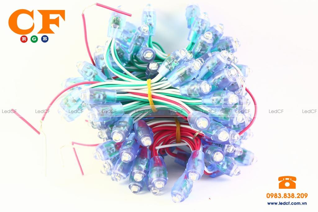 Cung cấp đèn led đúc giá rẻ tại Hà Nội