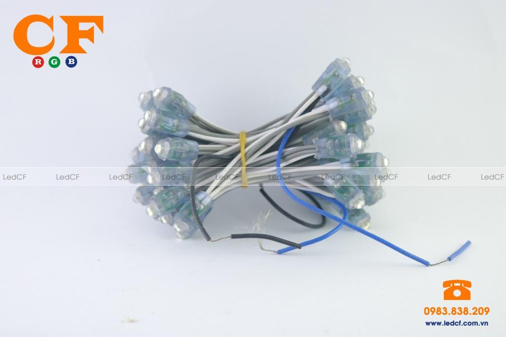 Công suất của các loại bóng đèn led đúc?