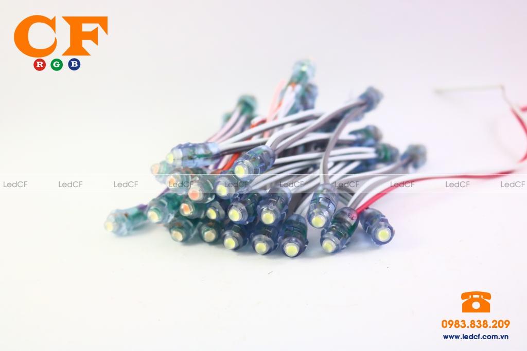 Thông số kỹ thuật của bóng đèn led đúc?