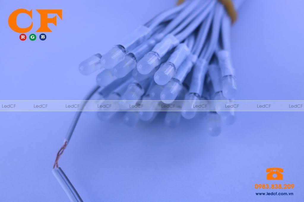 Nên mua led liền dây giá rẻ ở đâu tại Hà Nội?