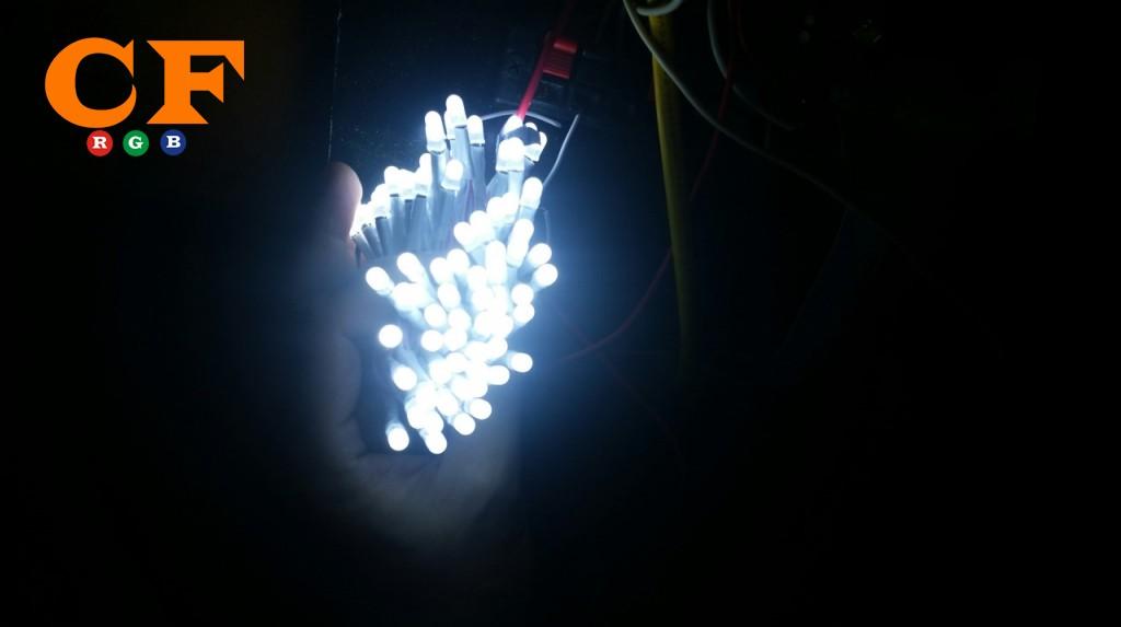 Đèn led liền dây dùng để trang trí cây?