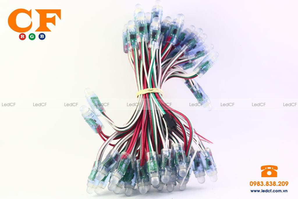 Các loại led full color trên thị trường?