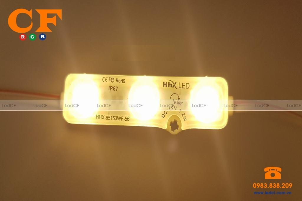 Các loại led hắt ở Hà Nội có giá bao nhiêu?