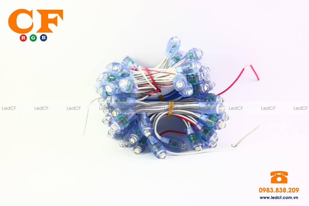 LED ĐÚC, THÔNG TIN LED ĐÚC MỚI NHẤT, LED ĐÚC F5, F8