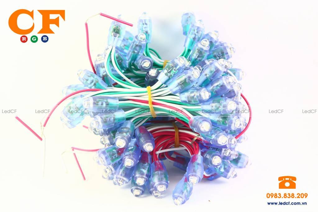 Text màu LED ĐÚC và các loại LED đúc thông dụng nhất trên thị trường