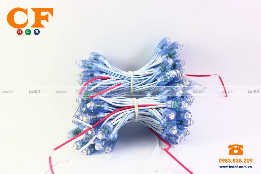 Tìm hiểu về cấu tạo của bóng đèn led đúc 7 màu