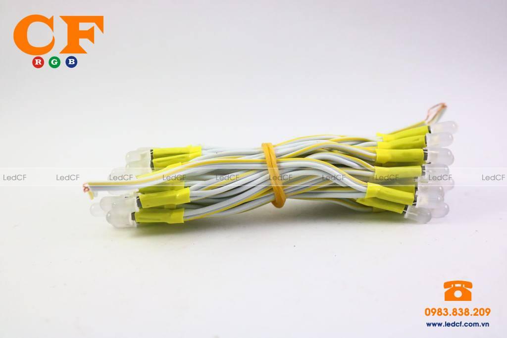 Bạn không nên bỏ qua dòng thiết bị led liền dây 5mm
