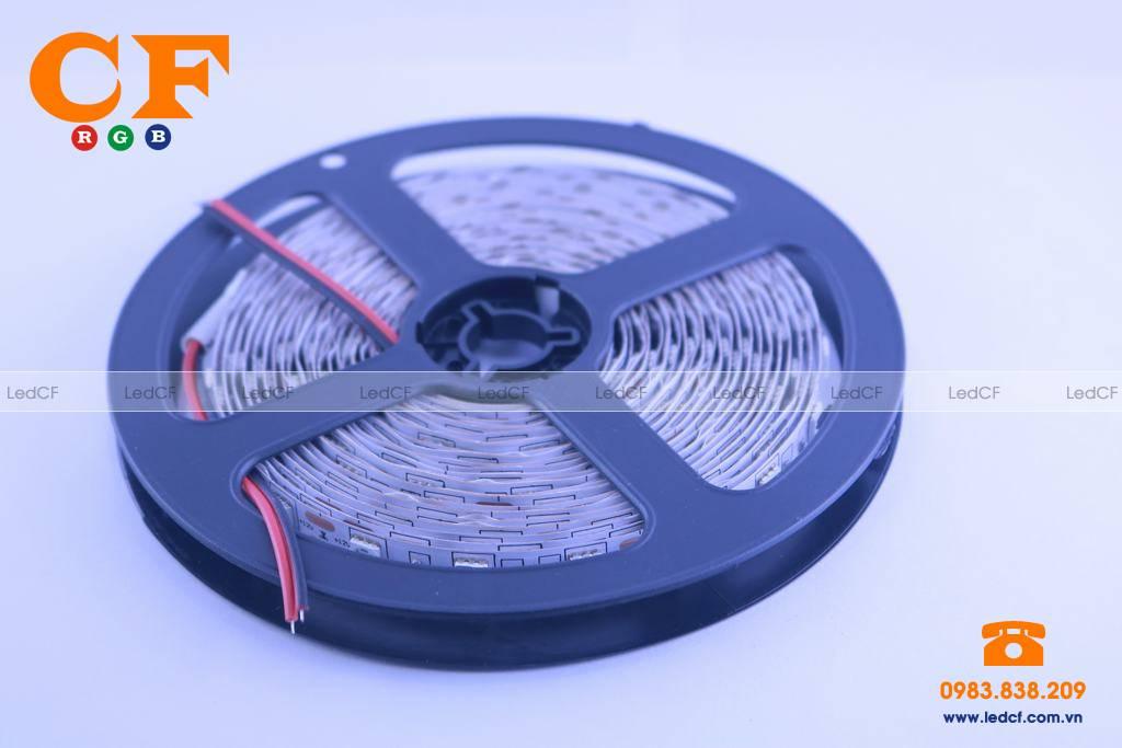 Ưu điểm và ứng dụng của đèn led dây dán 3528