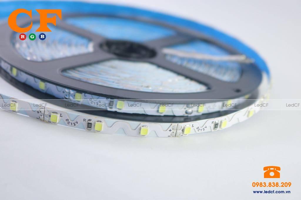 Mua led dây dán tại Hà Nội