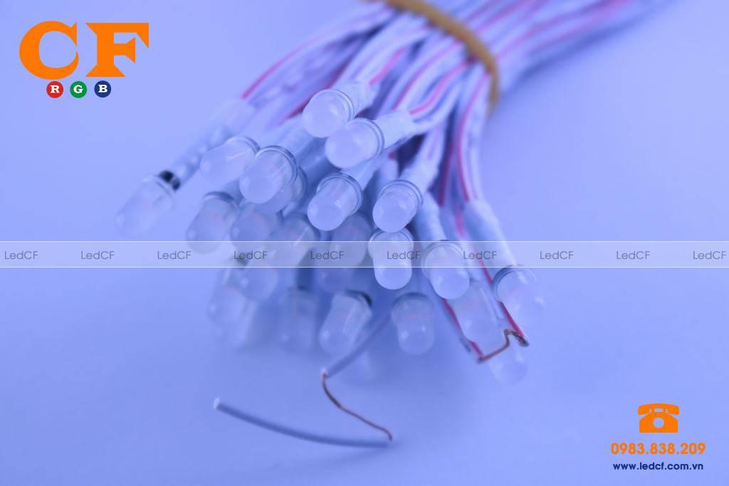 Led liền dây IPY - LEDCF Đại lý phân phối chi nhánh tại Việt Nam