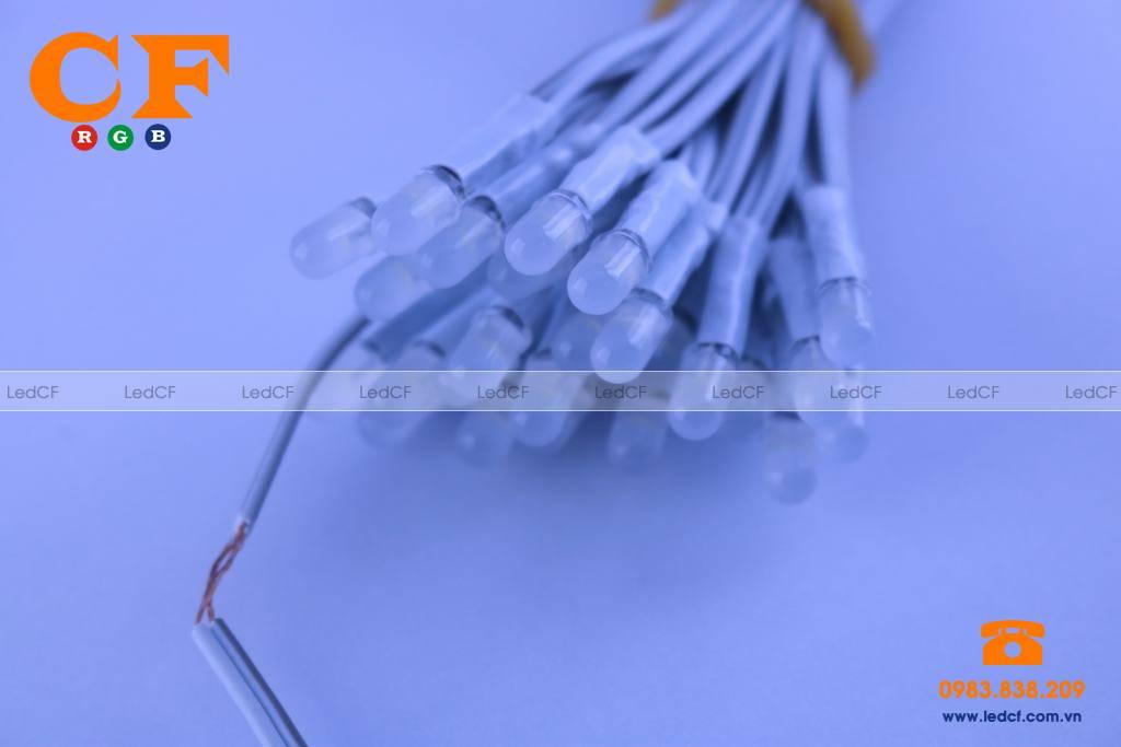 Cung cấp đèn led liền dây giá rẻ tại Hà Nội