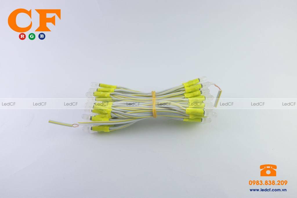 Led liền dây có công suất là bao nhiêu?