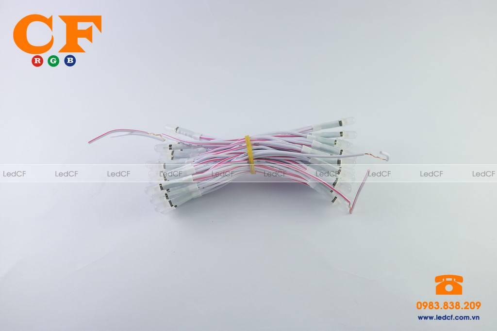 Sử dụng đèn led liền dây trong trang trí và quảng cáo