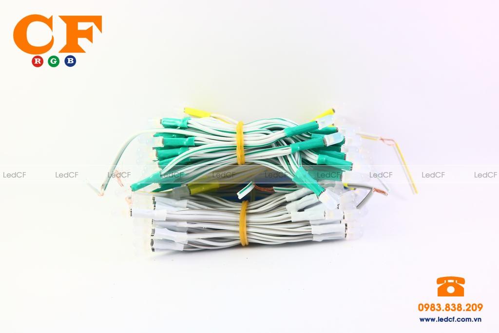 Led liền dây 5V