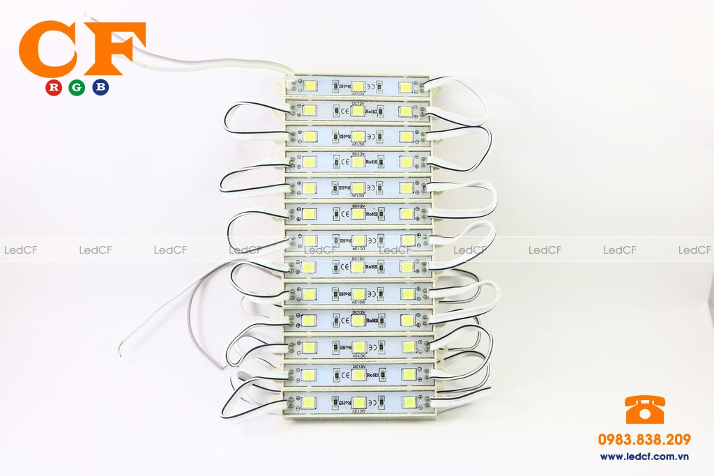 Led hắt 4040 winning