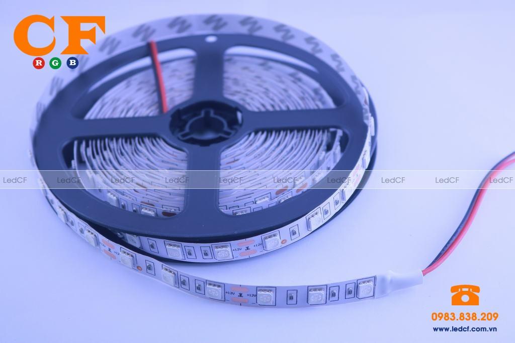 Led dây dán 5050 chống nước