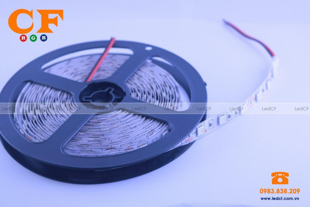 Led dây dán 5050 có silicon