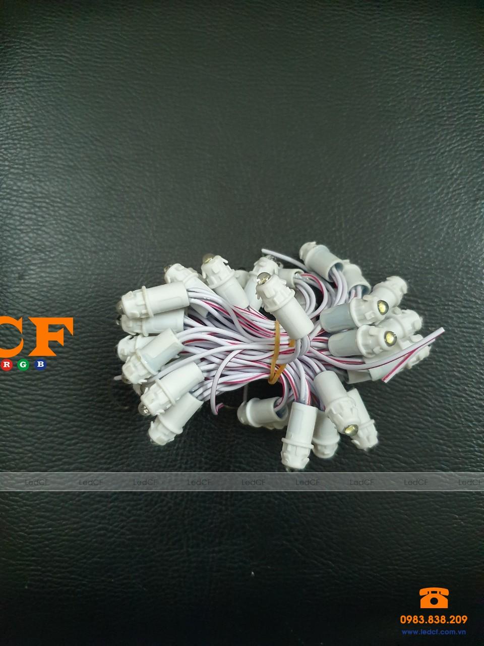 Led đúc F5/9mm JIYI 5v đúc nhựa màu IP 65