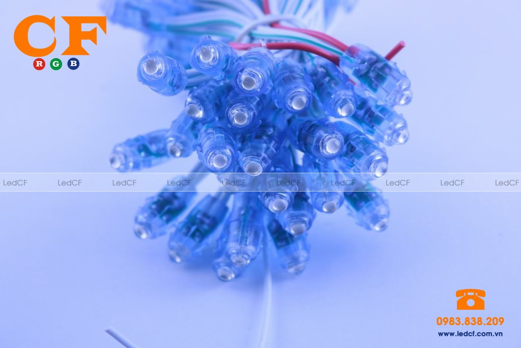 Led đúc 5mm đế 8